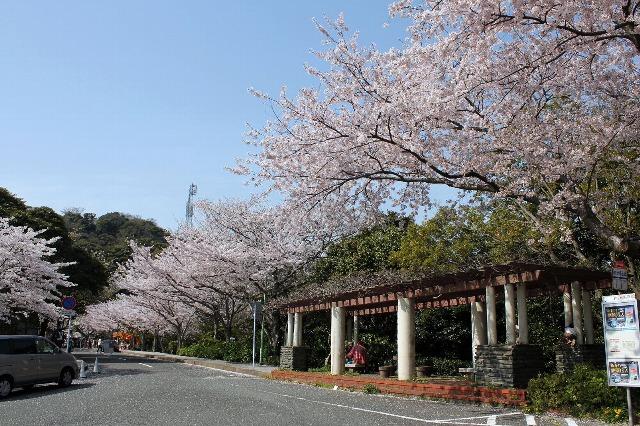 めかり絶景バス2012-002.jpg